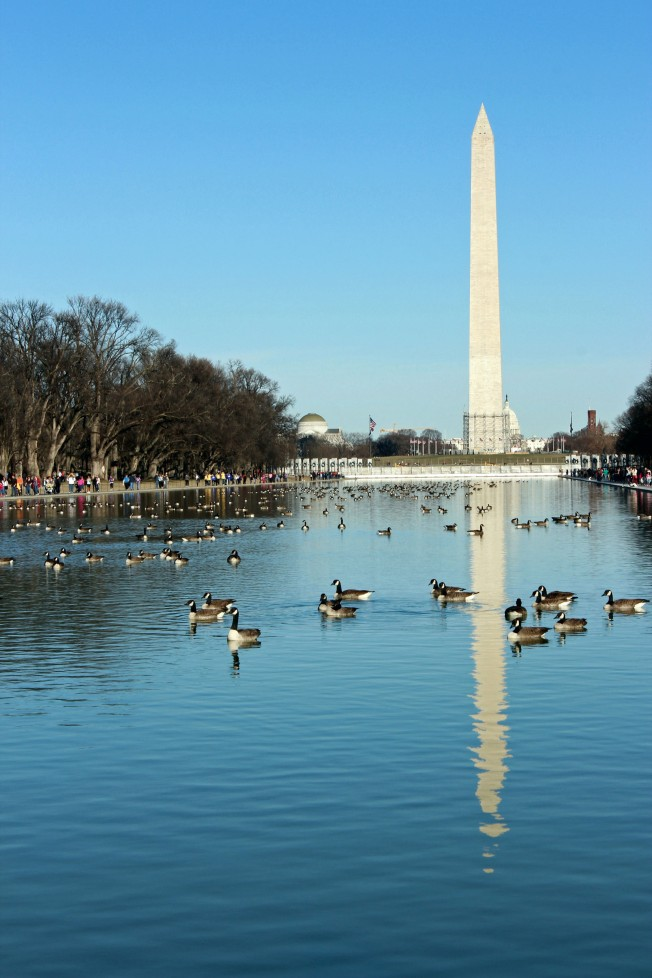 The Mall & Washington Monument